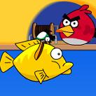 Angry birds câu cá 2 người