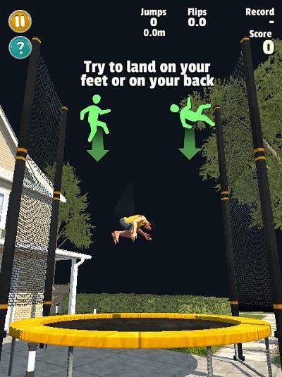 game Flip master online