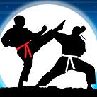 Game-Huyen-thoai-karate