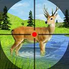 Săn bắn thú rừng